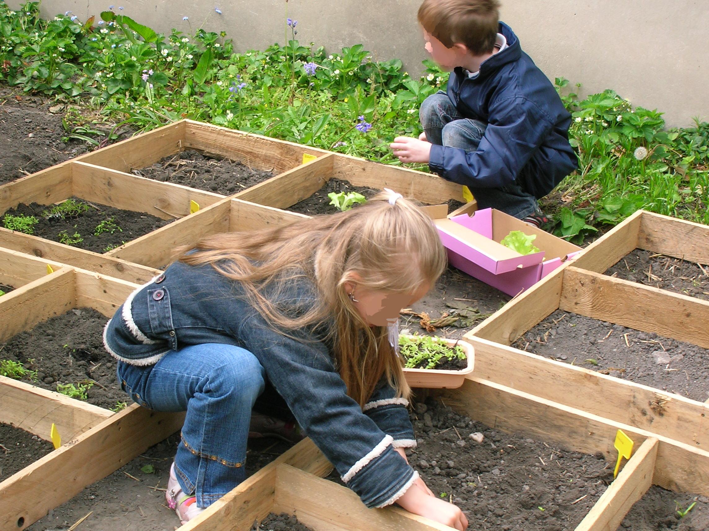 jardinage-1.jpg