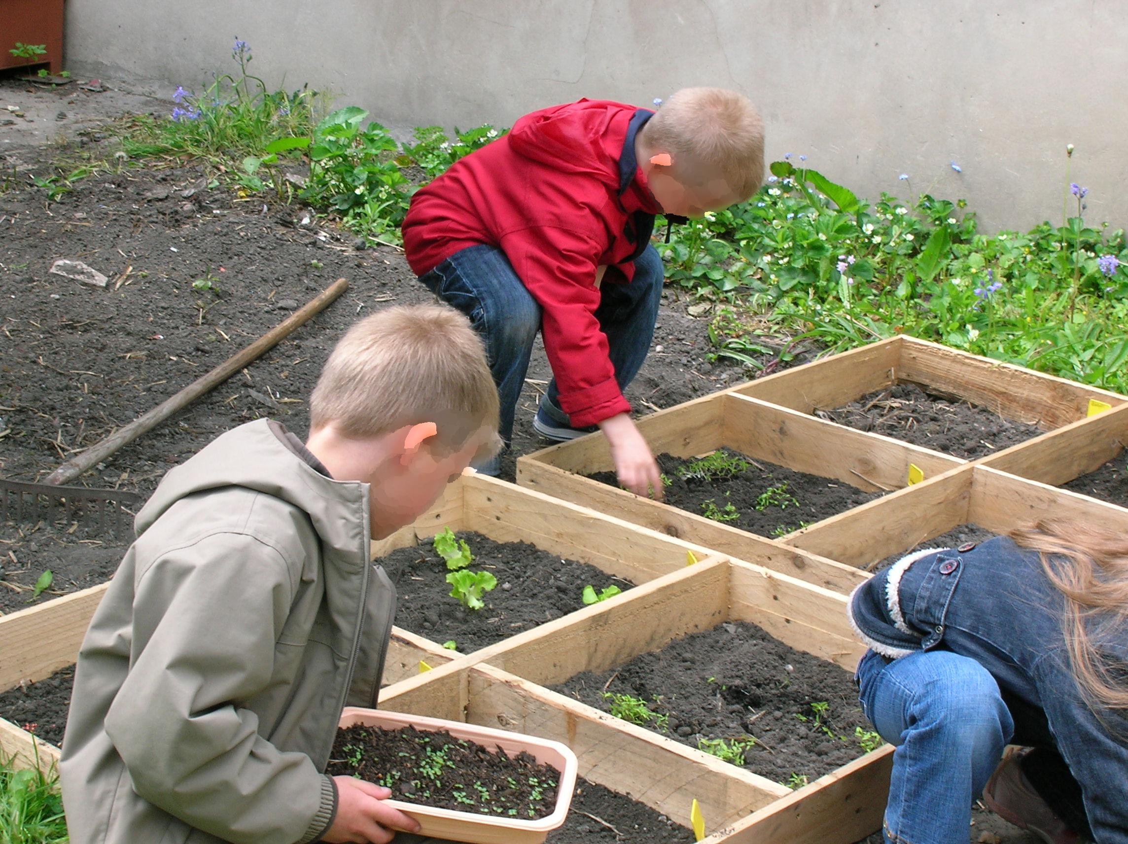 jardinage-2.jpg